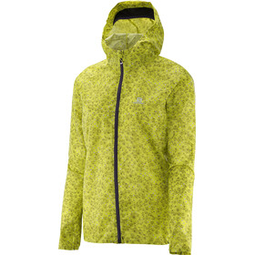 Salomon Fast Wing Graphic Hoodie Dame
